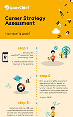 Career Strategy Assessment
